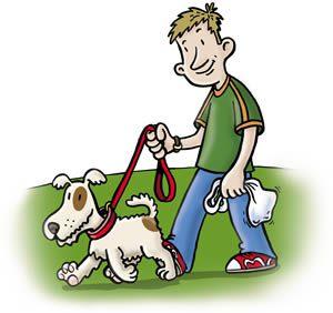 Walk your dog often